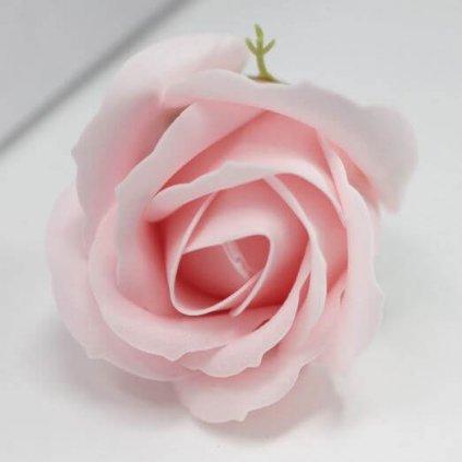 Mýdlový květ růže růžový