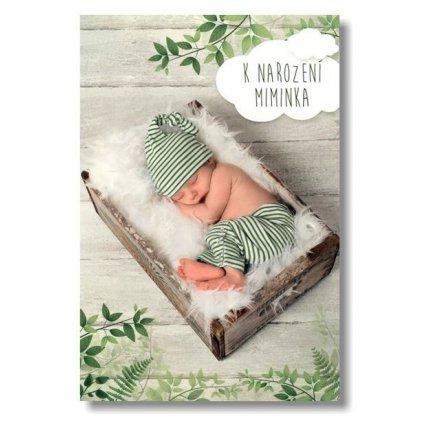 Přání k narození miminka hudební Z mechu a kapradí