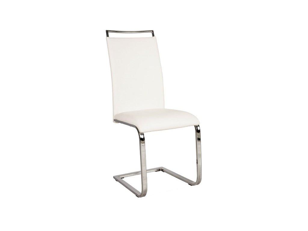 Moderní čalouněná židle H 334