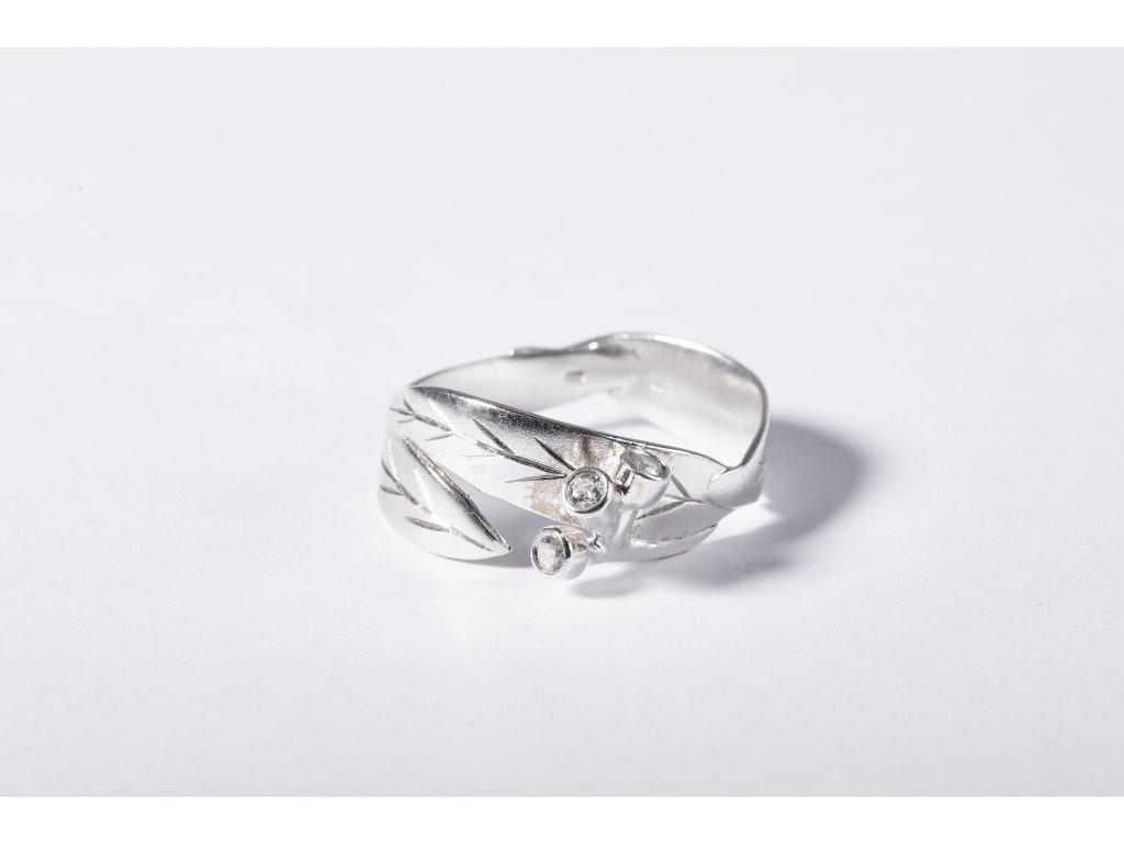 eukalyptový prsten (1)