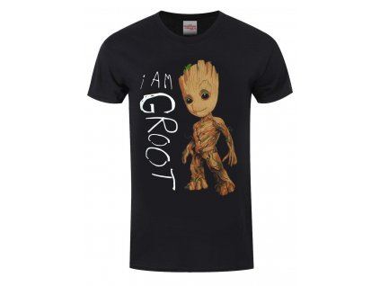 Guardians Of The Galaxy I Am Groot Men s Black T shirt t shirts