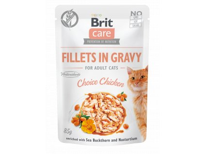 FILLETS GRAVY ADULT CHOISE CHICKEN