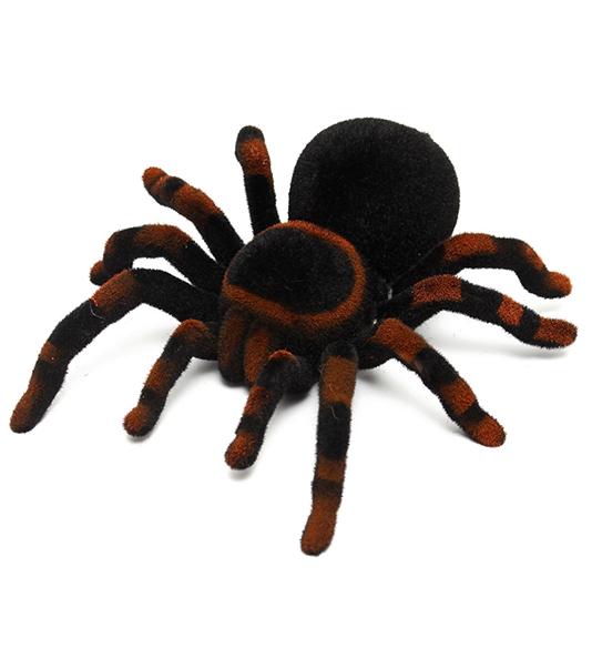 RC pavúci