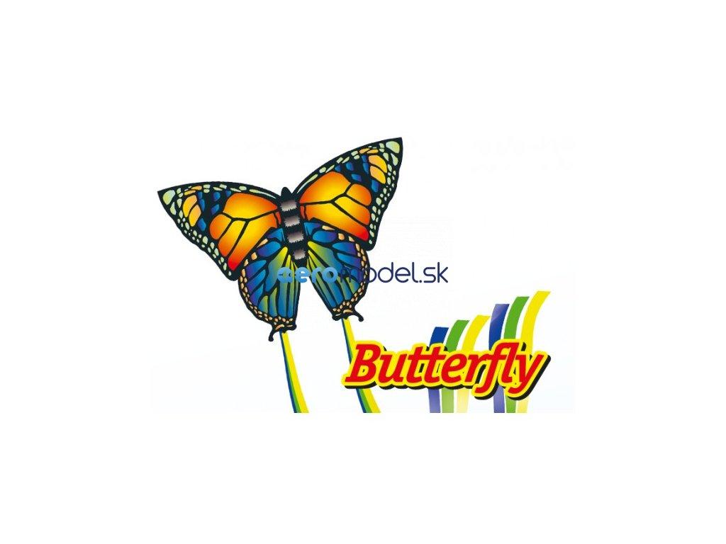 butterfly 95x63 cm gunther