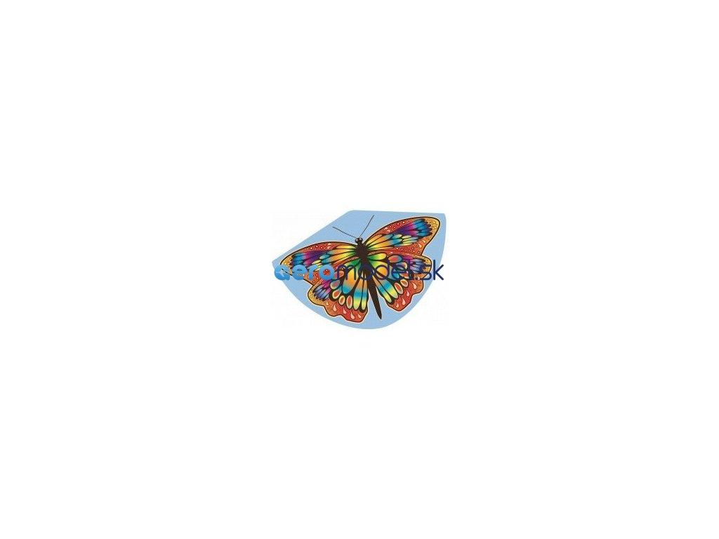papillon 92x62 cm gunther (1)