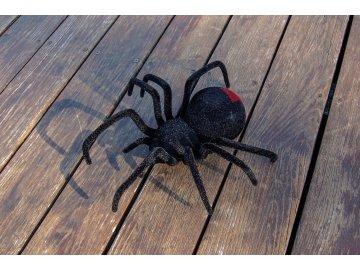 Rc pavúk, čierna vdova, LED oči, realistické ochlpenie