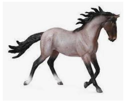 Pro nervózní koně