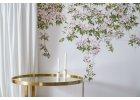 Kolekce květinových tapet Clematis