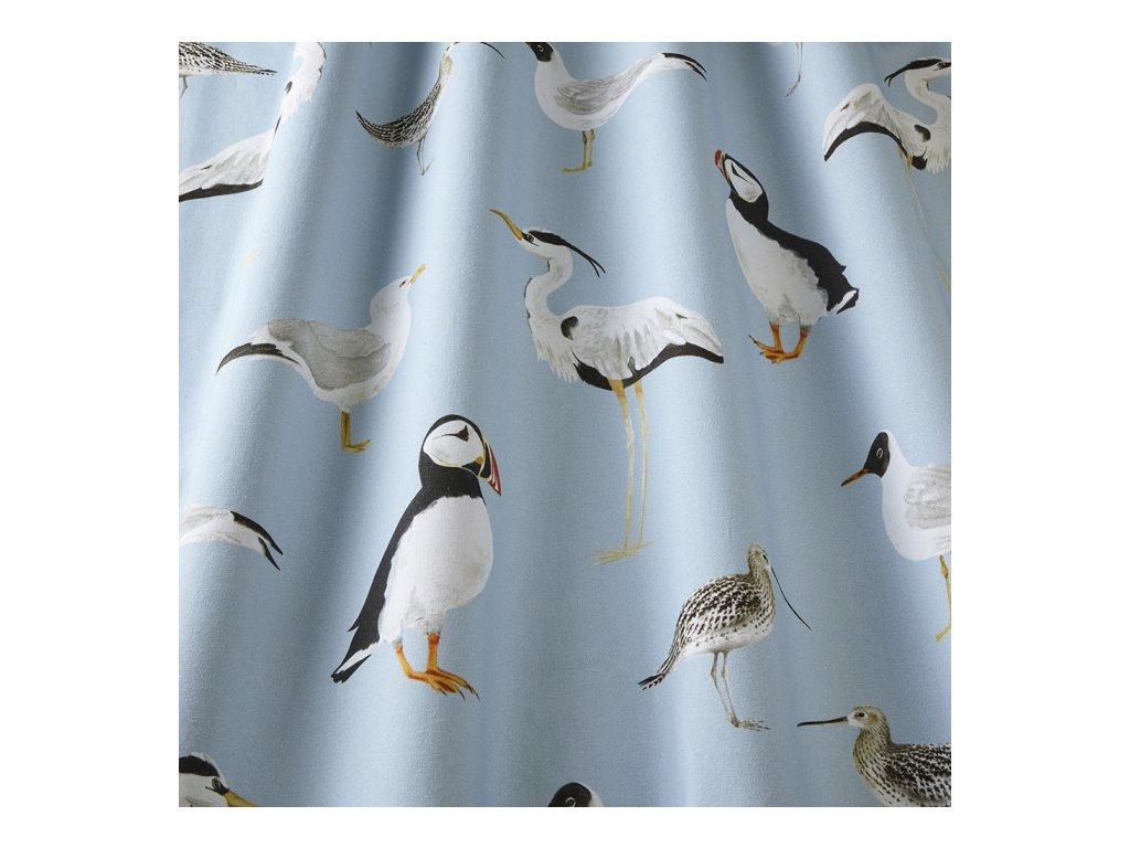 seabirds marine 2 1