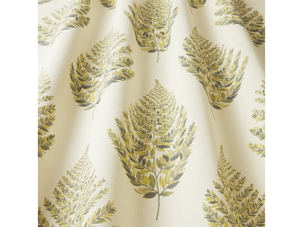 frond fennel 2