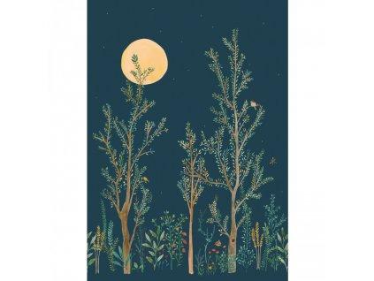 Panoramatická tapeta Midnight Walk 101666520