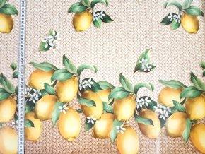 pvc obrusy do interieru a zahrady sirka 140 cm 70410200