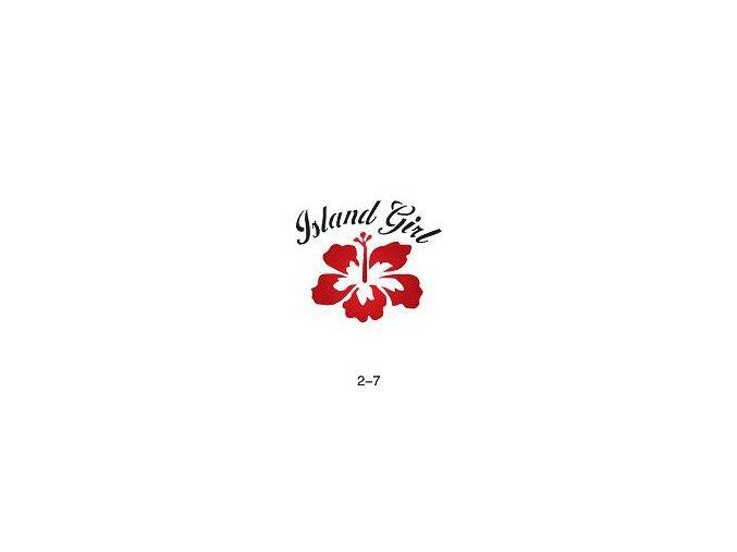 Sablon csillogó tetováláshoz Fengda 02-07