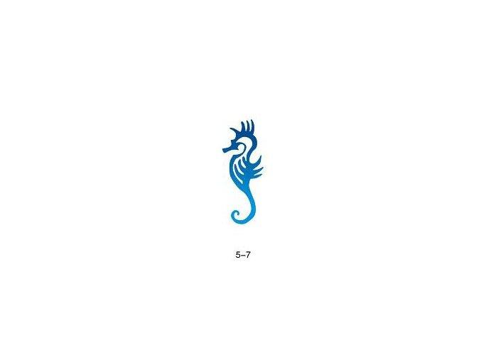 Sablon csillogó tetováláshoz Fengda 05-07