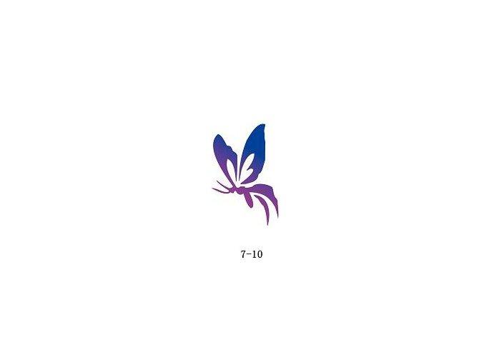 Sablon csillogó tetováláshoz Fengda 07-10
