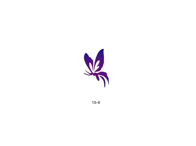 Sablon csillogó tetováláshoz Fengda  13-06