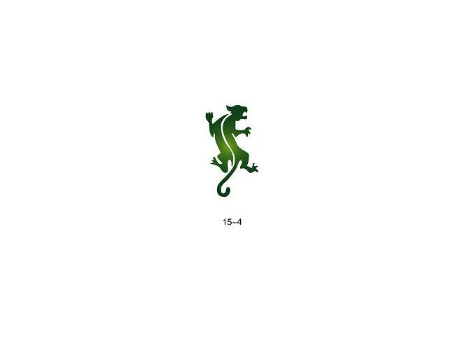 Sablon csillogó tetováláshoz Fengda 15-04