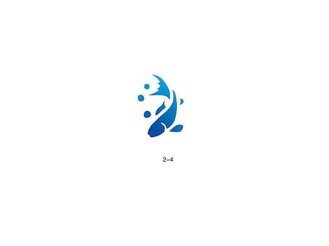 Šablóna pre trblietavé tetovanie Fengda 02-04
