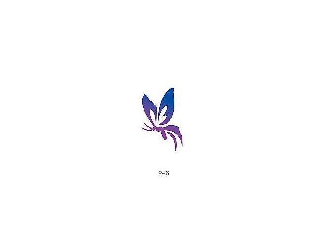 Šablóna pre trblietavé tetovanie Fengda 02-06
