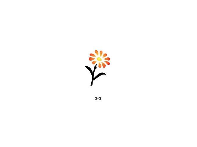 Šablóna pre trblietavé tetovanie Fengda 03-03