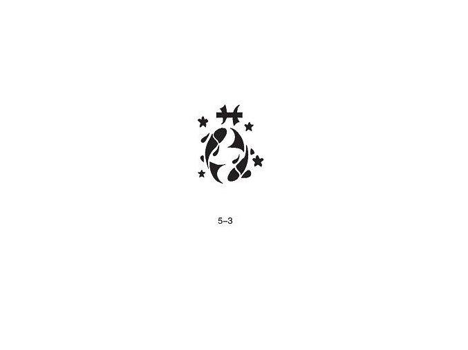 Šablóna pre trblietavé tetovanie Fengda 05-03