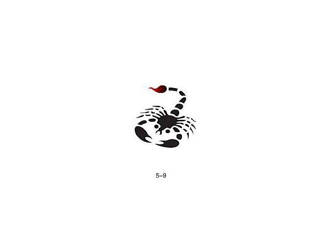 Šablóna pre trblietavé tetovanie Fengda 05-09