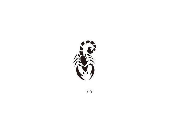 Šablóna pre trblietavé tetovanie Fengda 07-09
