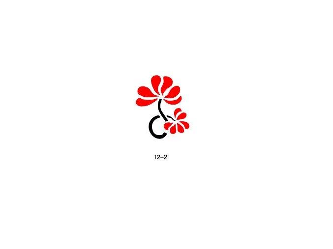 Šablóna pre trblietavé tetovanie Fengda  12-02