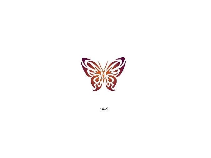 Šablóna pre trblietavé tetovanie Fengda 14-09