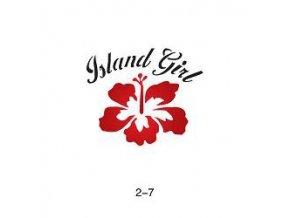 Šablóna pre trblietavé tetovanie Fengda 02-07