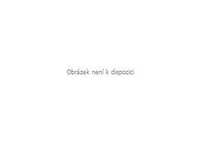 Scamp Pás Comfort ISOFIX pro těhotné, černý