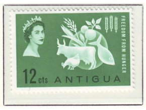 Antigua 0127