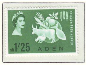 Aden 077