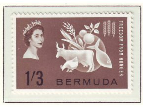 Bermuda 0181