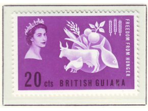 Br Guiana 0217