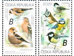 ČR 2020 / 1066-1068 / Spevavé vtáky I.
