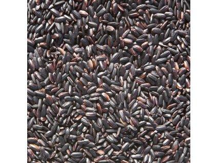 uvodni foto cerna ryze