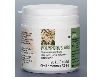 polyporus 01
