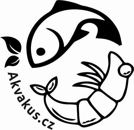 Akvakus