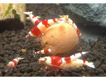 Mineral balls - minerály pro krevetky