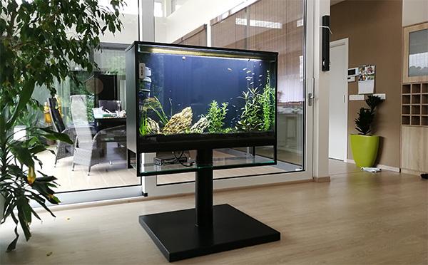 Revitalizácia zaujímavého TV akvária.