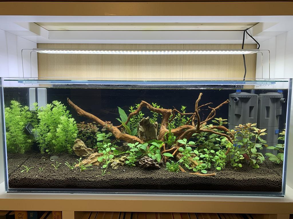 Akvárium 98l 80x35x35cm