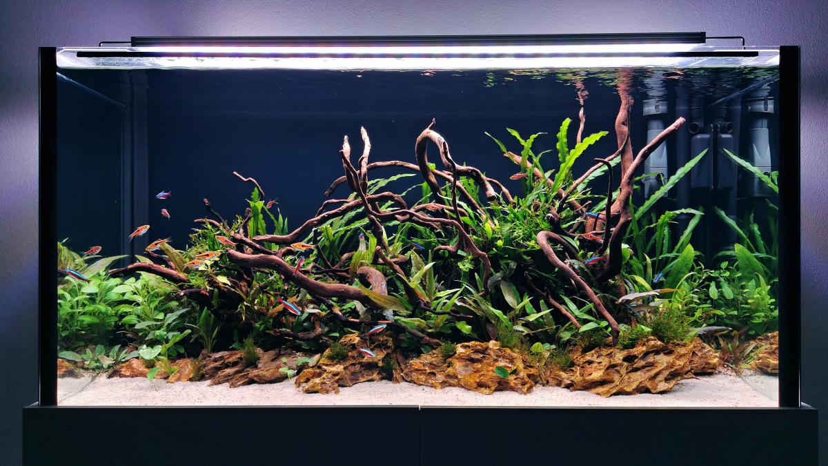 Akvárium 200l 100x40x50cm
