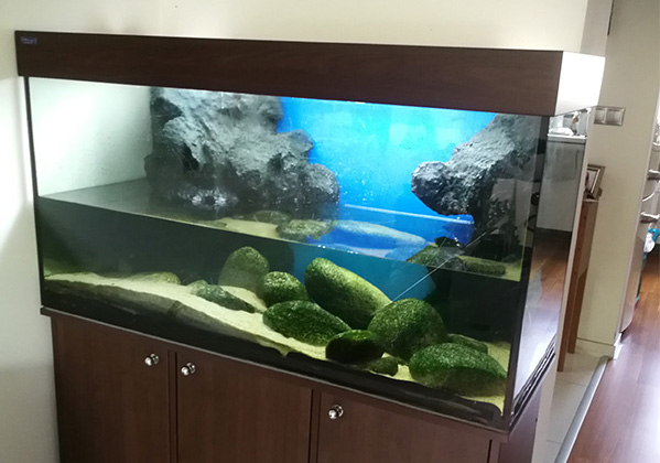 akvarium-pred-prerabkou