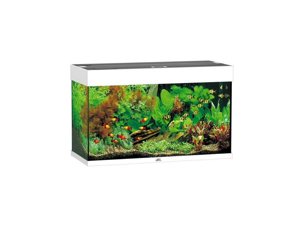 Juwel Rio 125 LED akvárium , 125l Biele  + kupón 30€ na nákup akváriových rastlín