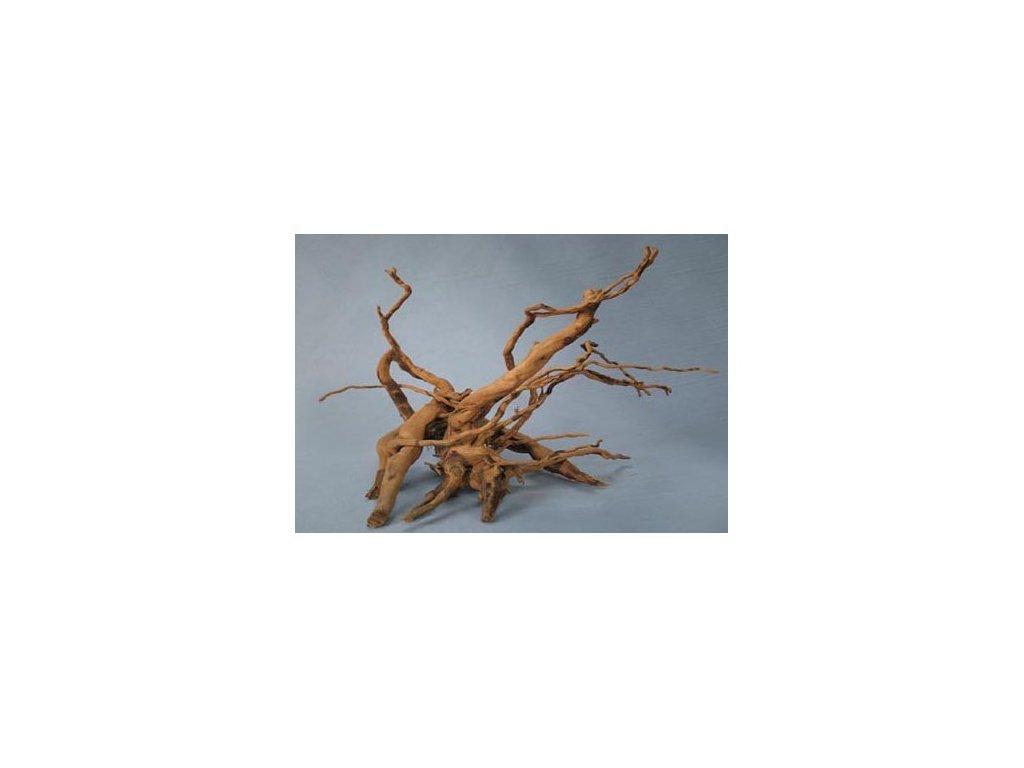 Koreň Finger Wood X- malý