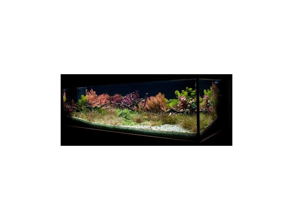 Revitalizácia akvária