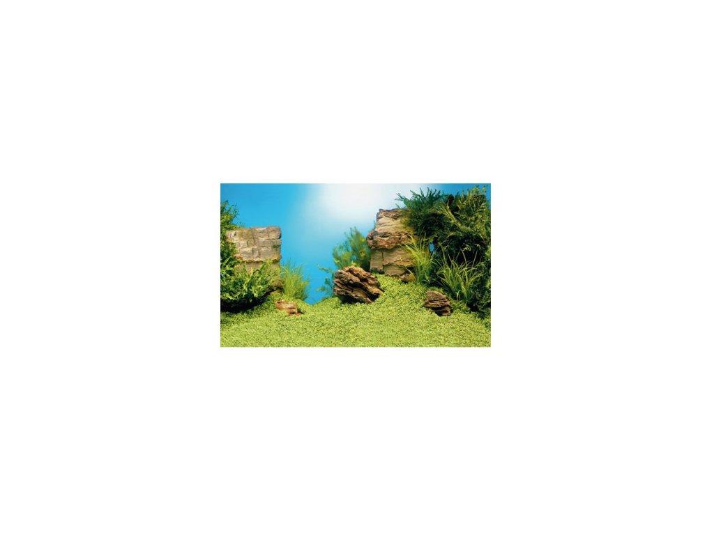 Juwel tapeta Plant/ Reef (S)