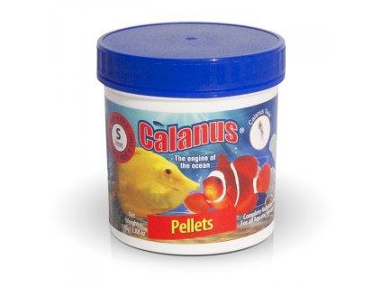 Calanus Pellets