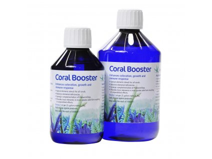 kz coral booster